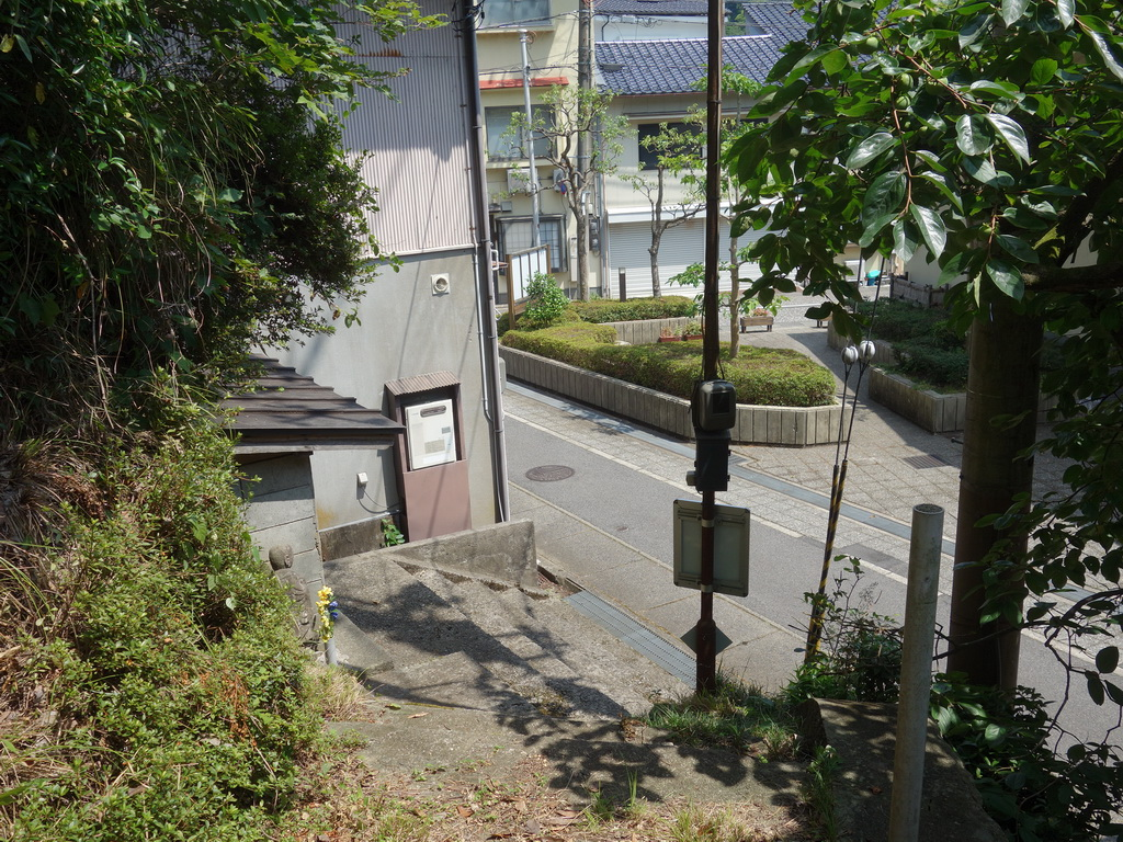 f:id:Hanamaru:20210802104715j:plain