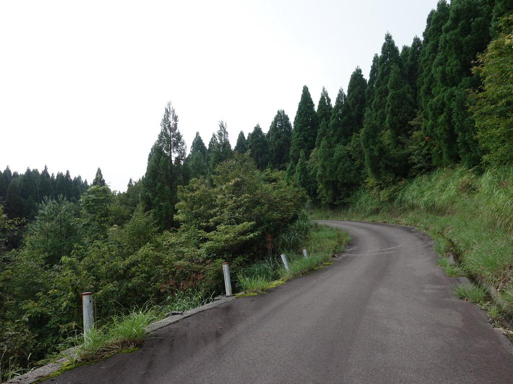 f:id:Hanamaru:20210829084823j:plain