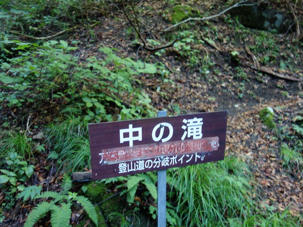 f:id:Hanamaru:20210920084918j:plain
