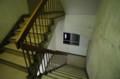 [散歩][ねこ]金森玲奈写真展「ちいさな宝物」会場の階段