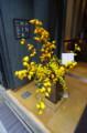 [うおがし銘茶]茶・銀座 六周年記念祭 店頭の生け花は小宇宙