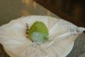 [うおがし銘茶]2階のお茶請けは谷中の喜久月の「あを梅」