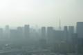 [散歩]聖路加タワーからの眺め