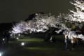 [散歩][花]浜離宮 ソメイヨシノのライトアップ