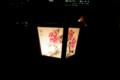 [散歩][花]牡丹燈篭