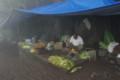 [散歩]Sinhagad Fort, 露店