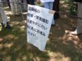 [花][イベント]小石川植物園でショクダイオオコンニャクが開花