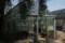 小石川植物園 温室