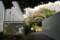 東京国立博物館 秋の庭園開放