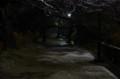 [散歩]雪の真田堤