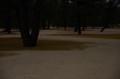 [散歩]雪の皇居外苑