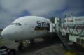 [旅][飛行機]A380