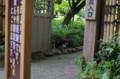 [ねこ]小石川後楽園のねこ