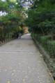 [旅][散歩]丸亀城