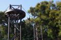 [旅][散歩]福岡市動植物園 シロテナガザル