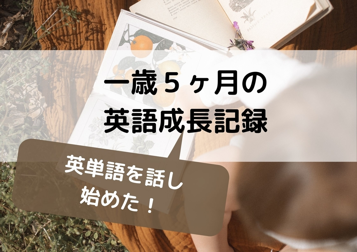 f:id:Hanashino:20201211221243j:plain