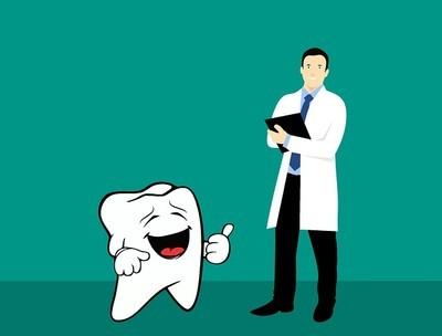 歯と歯科医
