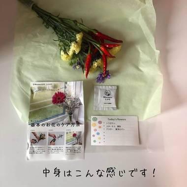 届いたお花の定期便
