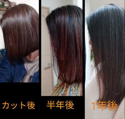 髪の伸びる比較画像