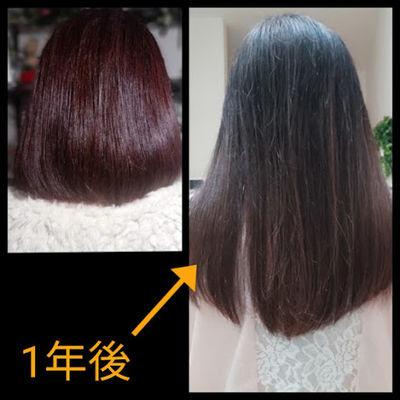 髪が1年で伸びる長さ後ろからの比較