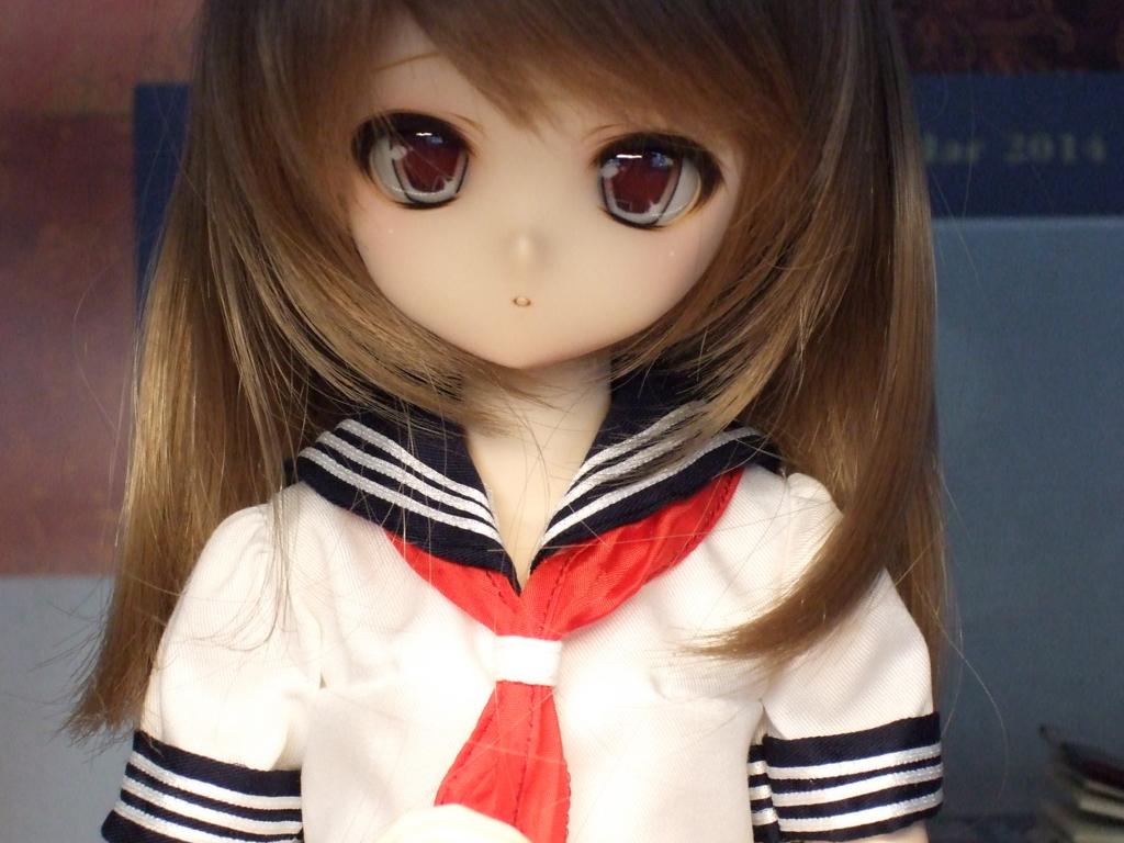 f:id:Hangetsu-Soichi:20141122154934j:plain