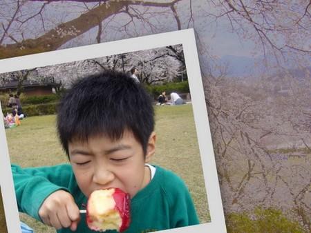 f:id:HappymanOkajima:20070407212224j:image