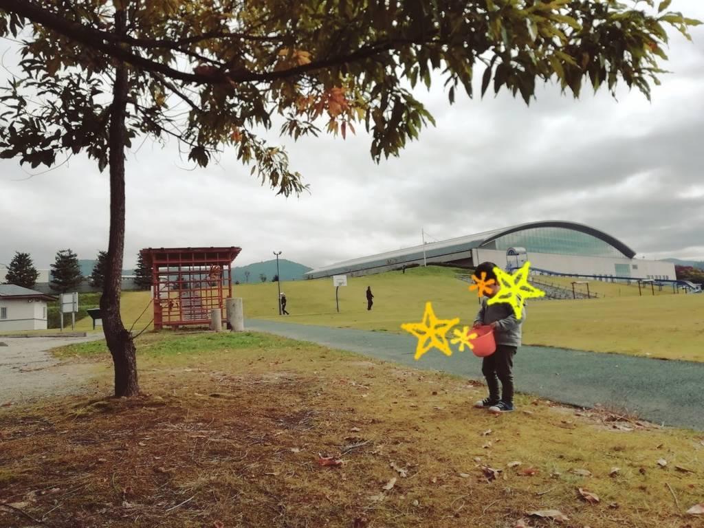 f:id:HaruSaki:20181020191548j:plain