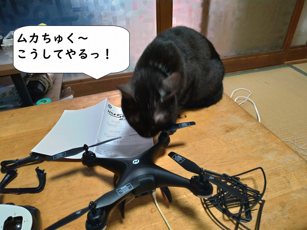 f:id:Harufuku:20190424110527j:plain