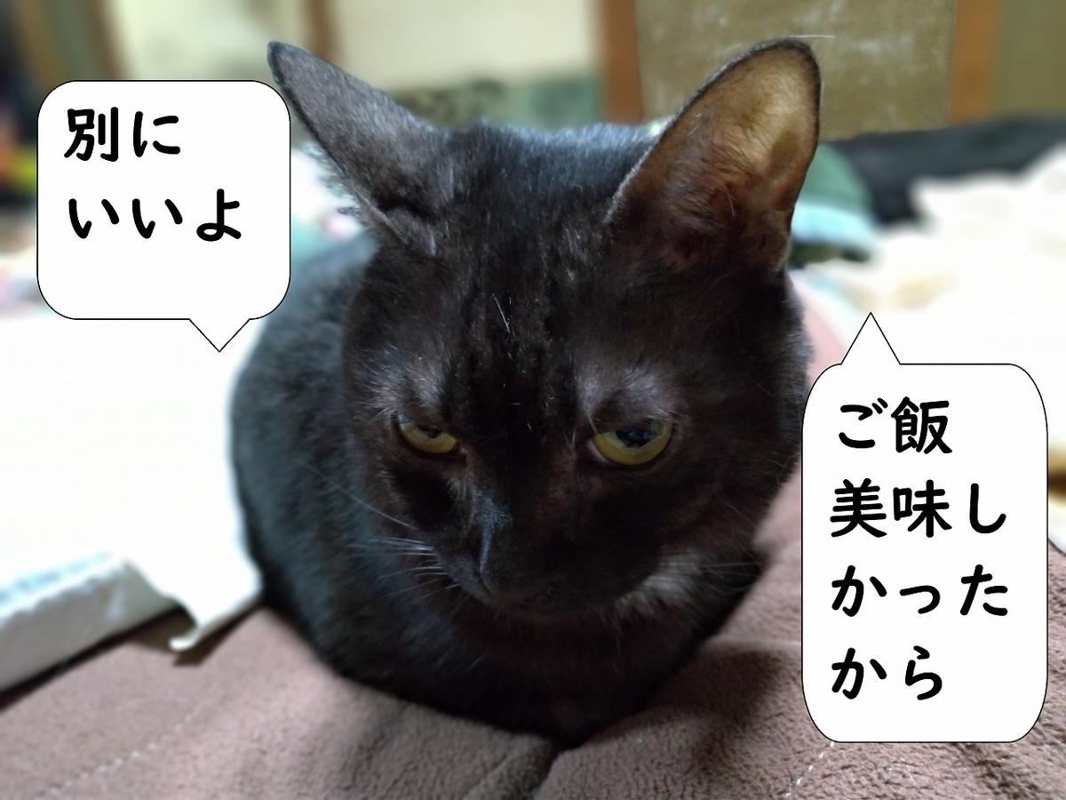 f:id:Harufuku:20190428223557j:plain