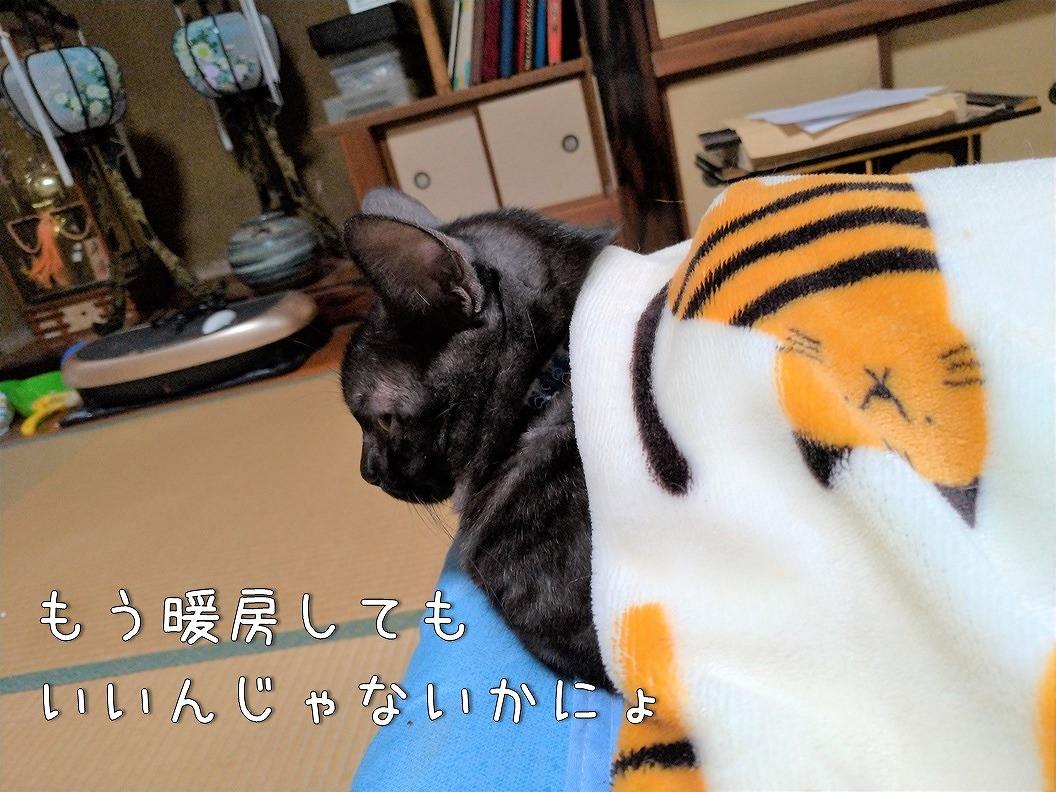 f:id:Harufuku:20191016105549j:plain
