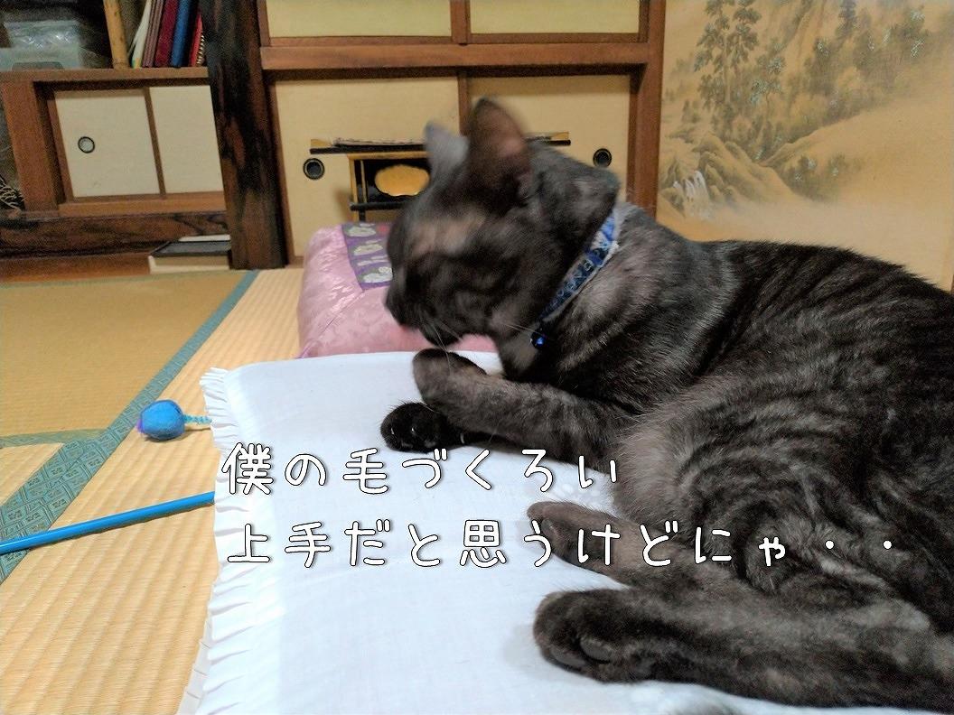 f:id:Harufuku:20191021192837j:plain