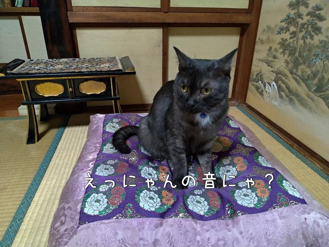f:id:Harufuku:20191227111834j:plain