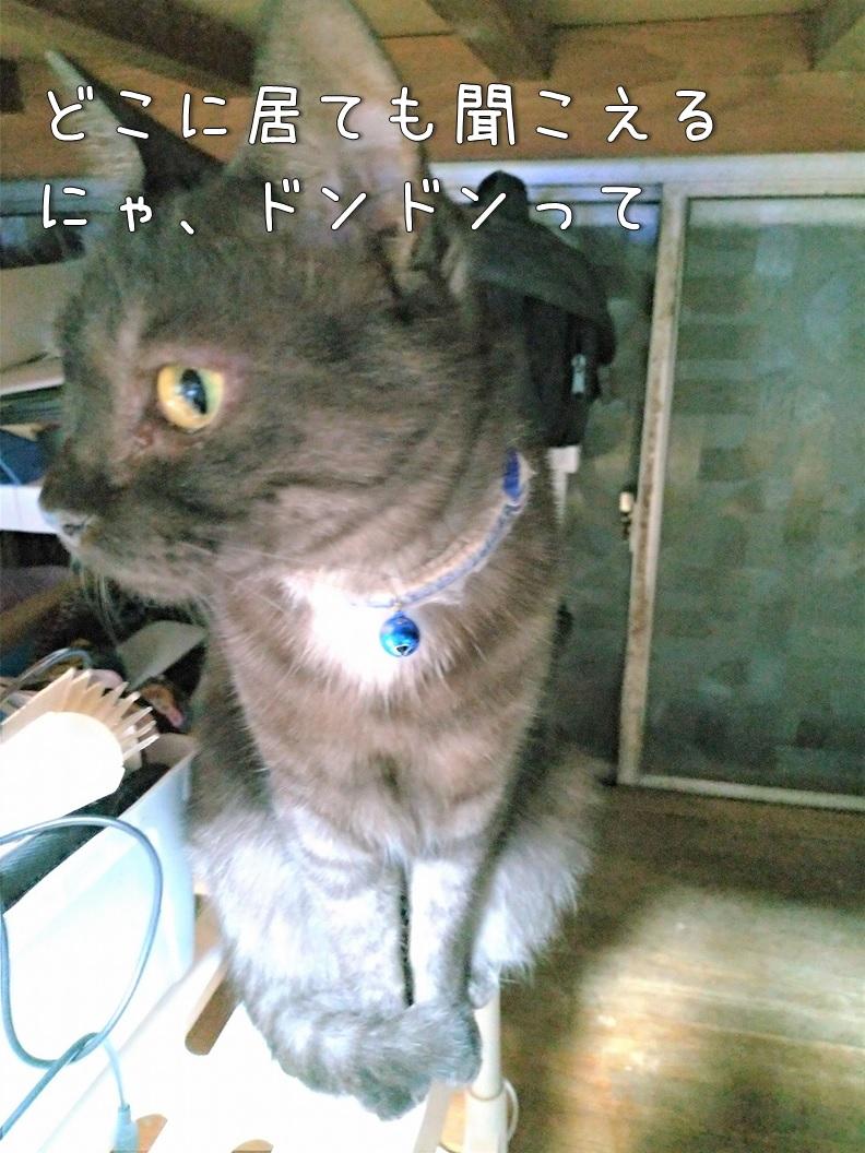 f:id:Harufuku:20191227111930j:plain