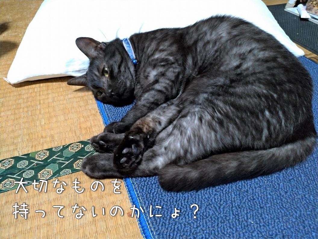 f:id:Harufuku:20200630151700j:plain