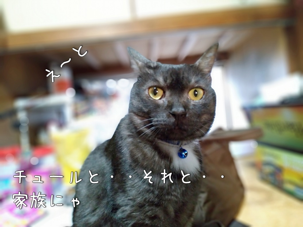 f:id:Harufuku:20200630152015j:plain