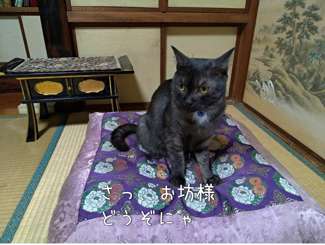 f:id:Harufuku:20200805110313j:plain