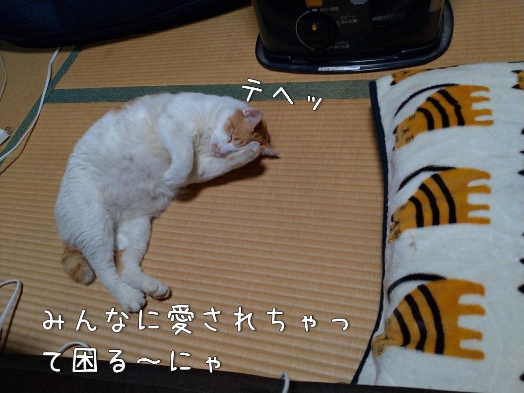 f:id:Harufuku:20200806103434j:plain