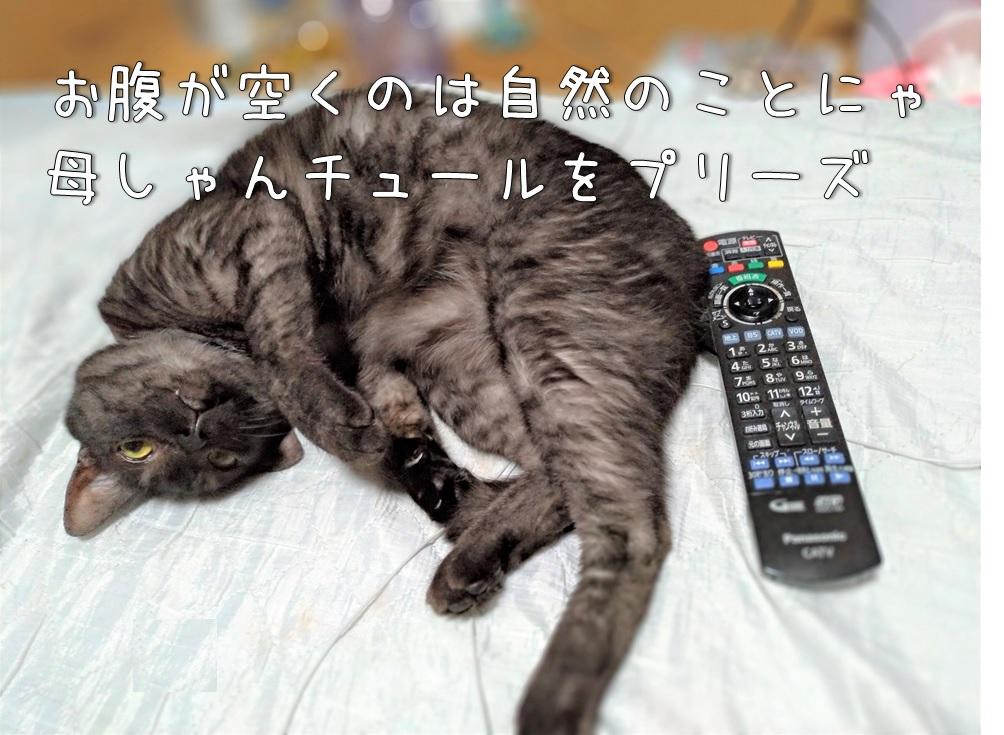 f:id:Harufuku:20200903113006j:plain