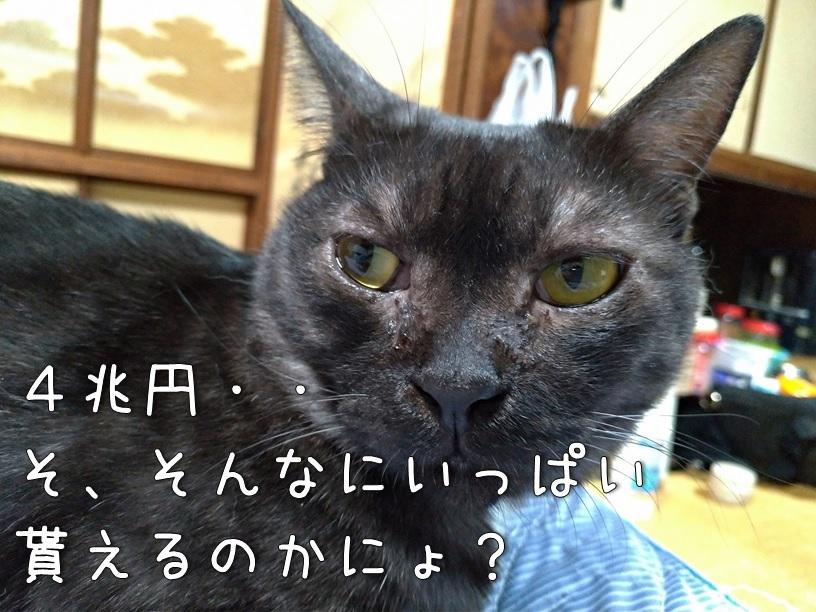 f:id:Harufuku:20200904133714j:plain