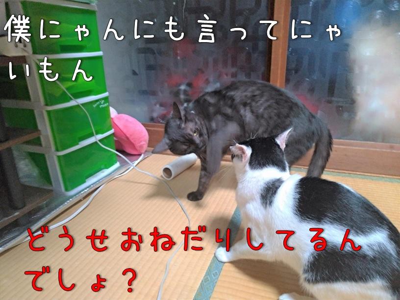 f:id:Harufuku:20200914105925j:plain