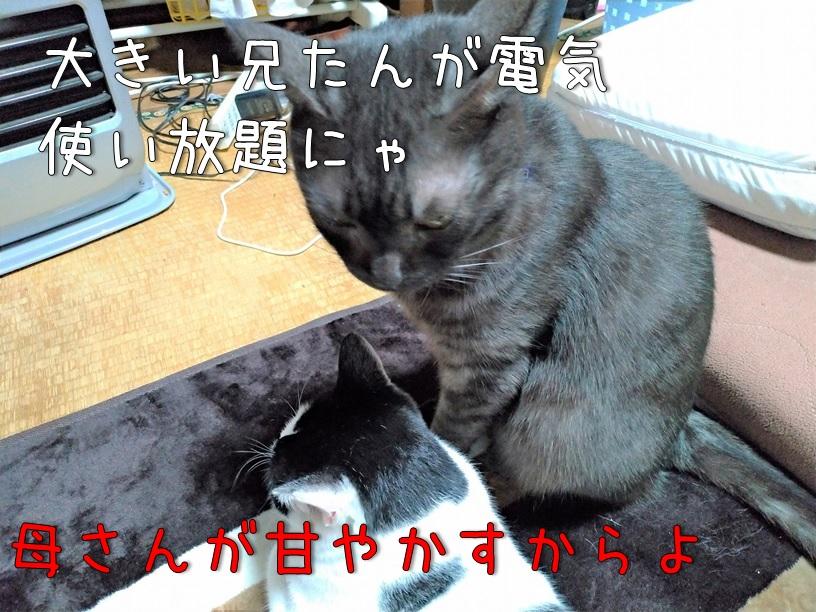 f:id:Harufuku:20200924122958j:plain