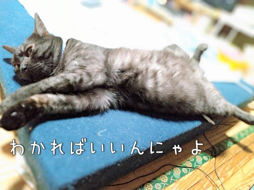 f:id:Harufuku:20200928114241j:plain