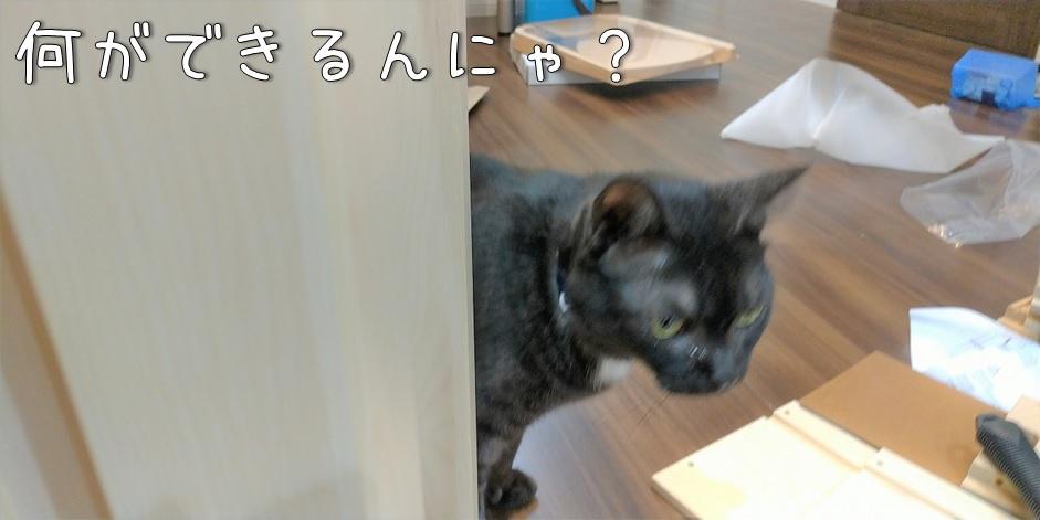 f:id:Harufuku:20211014170921j:plain
