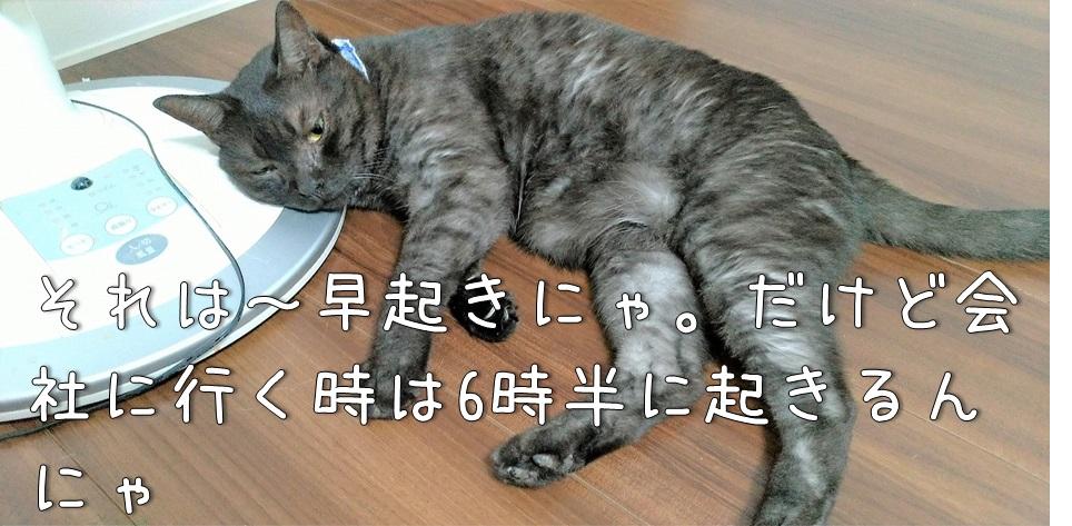 f:id:Harufuku:20211015173306j:plain