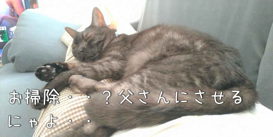 f:id:Harufuku:20211018162510j:plain