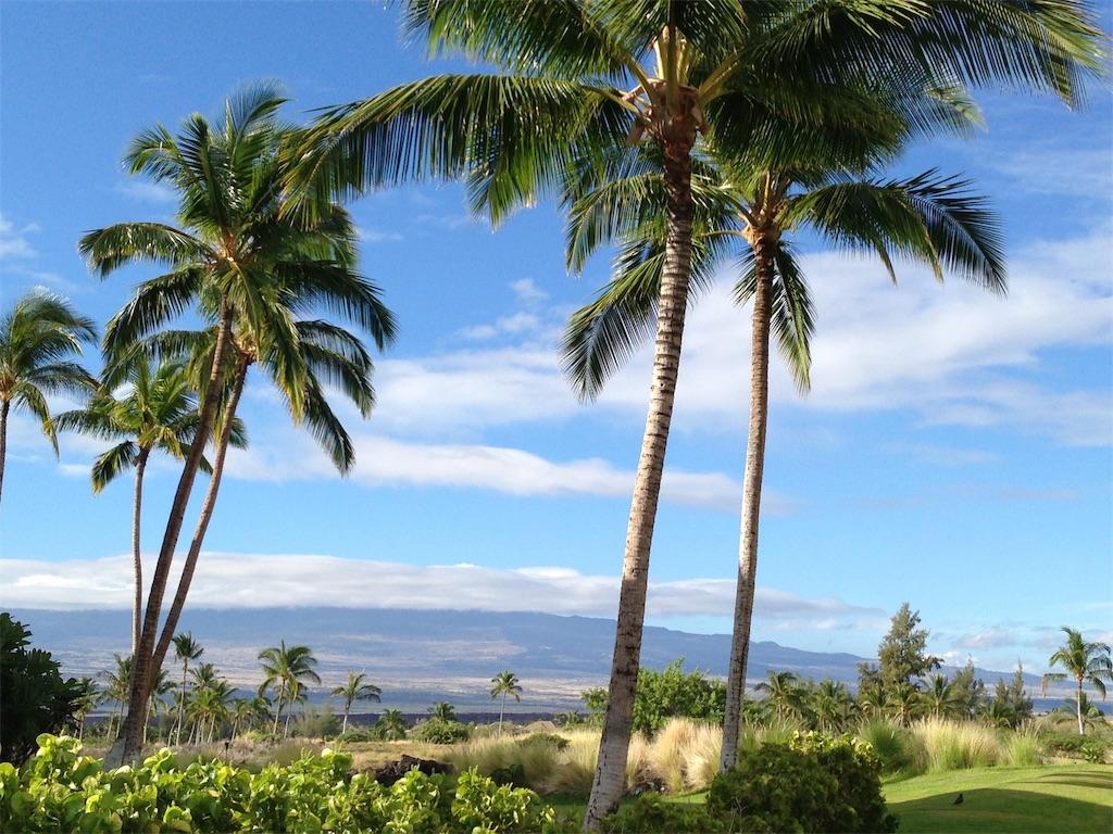 f:id:Hawaii_raoukona:20191010182528j:image