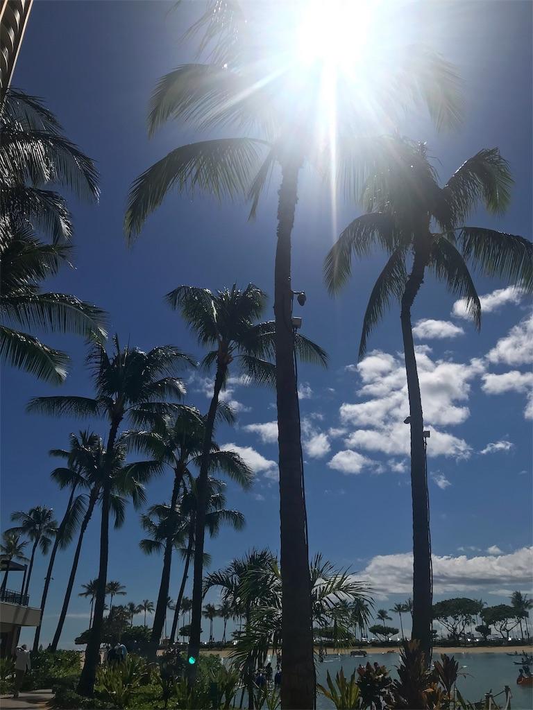f:id:Hawaii_raoukona:20191010190618j:image