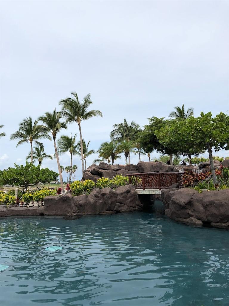 f:id:Hawaii_raoukona:20191013153217j:image