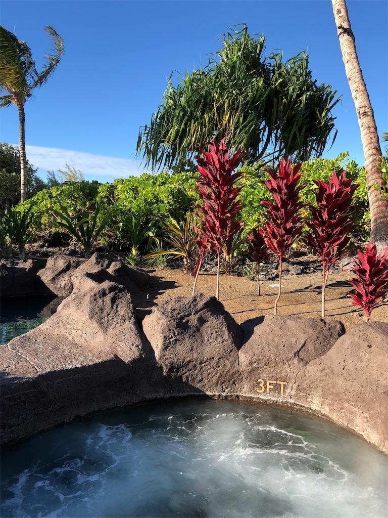 f:id:Hawaii_raoukona:20191013154727j:image