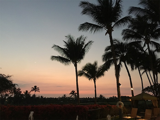 f:id:Hawaii_raoukona:20200113111726p:image